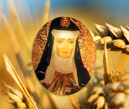 Epeautre Bio - Sainte Hildegarde
