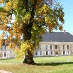 Parc du Château de Baye